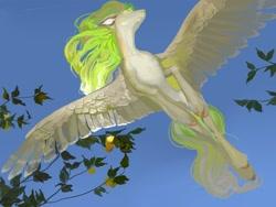 Size: 2560x1920   Tagged: safe, artist:yanisfucker, oc, oc only, pony, flying, realistic horse legs, solo, wings