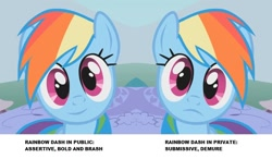 Size: 938x547 | Tagged: safe, edit, edited screencap, screencap, rainbow dash, pegasus, pony, dragonshy, breaking the fourth wall, cropped, cute, dashabetes, female, frown, looking at you, mare, reaction image, smiling, solo, stare, wide eyes