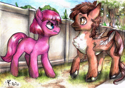 Size: 4951x3464   Tagged: safe, artist:furiarossaandmimma, oc, oc only, oc:dolce mocha, oc:violet petal, earth pony, pegasus, pony, blank flank, blushing, female, fence, flirting, glare, looking at each other, male, mare, outdoors, shipping, stallion, standing, straight, surprised, traditional art, tree, unshorn fetlocks