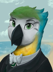 Size: 1280x1724   Tagged: safe, artist:monx94, oc, oc only, bird, parrot, equestria at war mod, brazil, bust, looking at you, portrait, simple background, solo