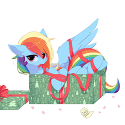 Size: 1500x1500 | Tagged: safe, artist:heddopen, rainbow dash, pegasus, pony, adorasexy, blushing, box, christmas, cute, dashabetes, ear fluff, eyelashes, featured image, female, holiday, hooves, if i fits i sits, looking at you, mane, mare, mouth hold, note, pony in a box, present, ribbon, sexy, simple background, solo, spread wings, stuck, stupid sexy rainbow dash, sweet dreams fuel, tail, white background, wing fluff, wings