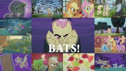 Size: 1986x1117   Tagged: safe, edit, edited screencap, editor:quoterific, screencap, applejack, fluttershy, pinkie pie, rainbow dash, rarity, spike, twilight sparkle, alicorn, bat, bat pony, earth pony, fruit bat, pegasus, pony, unicorn, vampire fruit bat, bats!, season 4, apple, apple tree, bat ponified, female, flutterbat, golden oaks library, hazmat suit, mane six, mare, race swap, tree, twilight sparkle (alicorn)