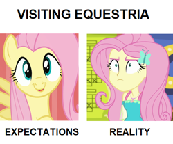 Size: 500x413 | Tagged: safe, edit, screencap, fluttershy, pegasus, pony, equestria girls, equestria girls series, fluttershy's butterflies, putting your hoof down, bust, c:, cropped, cute, expectation vs reality, faic, female, fluttershy is not amused, fluttershy's butterflies: rainbow dash, geode of fauna, hairpin, happy, looking at you, magical geodes, mare, open mouth, raised hoof, simple background, smiling, solo, spread wings, unamused, white background, wings