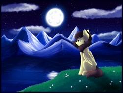 Size: 1600x1210   Tagged: safe, artist:whitehershey, oc, oc only, oc:white hershey, pegasus, pony, female, moon, mountain, night, night sky, scenery, sky, solo