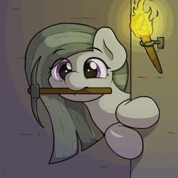 Size: 4096x4096   Tagged: safe, artist:ljdamz1119, marble pie, earth pony, pony, cute, daaaaaaaaaaaw, female, marblebetes, mare, minecraft, mouth hold, pickaxe, redraw, solo, torch