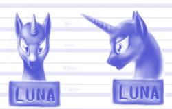 Size: 800x508 | Tagged: safe, artist:grayma1k, princess luna, alicorn, pony, bald, bust, female, monochrome, mugshot, no mane, profile, solo