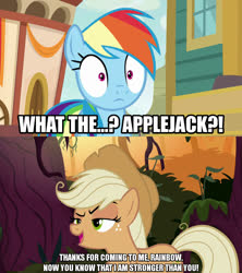Size: 1280x1440 | Tagged: safe, edit, edited screencap, screencap, mean applejack, rainbow dash, earth pony, pegasus, common ground, the mean 6, spoiler:s09e06, caption, clone, dialogue, female, freckles, hat, image macro, mare, meme, raised hoof, text
