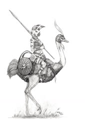 Size: 1000x1461 | Tagged: safe, artist:baron engel, zecora, anthro, bird, ostrich, unguligrade anthro, zebra, axe, breasts, busty zecora, female, jewelry, mare, monochrome, pencil drawing, shield, skimpy outfit, staff, traditional art, weapon