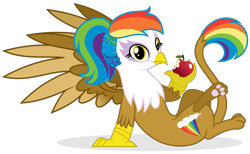 Size: 2456x1516 | Tagged: safe, artist:shizow, oc, oc only, oc:rainbow feather, griffon, apple, eating, female, food, griffon oc, interspecies offspring, magical lesbian spawn, multicolored hair, offspring, parent:gilda, parent:rainbow dash, parents:gildash, paws, rainbow hair, simple background, solo, transparent background, underpaw