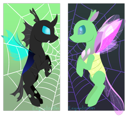 Size: 1050x950   Tagged: safe, artist:enigmadoodles, changedling, changeling, duality, solo, spider web