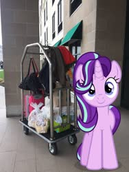 Size: 1537x2049 | Tagged: safe, edit, editor:topsangtheman, starlight glimmer, pony, unicorn, hotel, irl, looking at you, luggage, luggage cart, new york, niagara falls, photo, ponies in real life