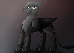 Size: 2800x2000   Tagged: safe, artist:somber, oc, oc only, oc:heidi blackfeathers, griffon, fallout equestria, colored, fallout equestria: longtalons, fanfic, fanfic art, female, light, looking at you, shadow, solo