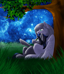 Size: 1753x2046 | Tagged: safe, king sombra, oc, oc:light knight, good king sombra, good queen umbra, grass, night, queen umbra, rule 63, starry sky, stars, tree, tree branch
