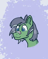 Size: 1156x1418 | Tagged: safe, artist:biglama, oc, earth pony, head, patch, plaster, simple background, solo