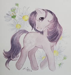 Size: 640x670 | Tagged: safe, artist:creeate97, blossom, earth pony, pony, blossom (g1), female, flower, g1, looking at you, mare, simple background, solo, traditional art, watercolor painting, white background