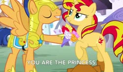 Size: 1230x720 | Tagged: safe, artist:miles prower77, flash sentry, sunset shimmer, pegasus, pony, unicorn, canterlot, female, flashimmer, flower, male, shipping, straight