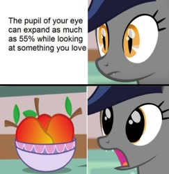 Size: 500x514 | Tagged: safe, artist:stormxf3, edit, oc, oc only, oc:echo, bat pony, bat pony oc, bust, cute, dilated pupils, female, food, mango, meme, ocbetes, open mouth, portrait, solo, that batpony sure does love mangoes