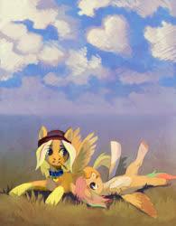 Size: 1500x1919 | Tagged: safe, artist:dearmary, oc, oc only, pegasus, pony, cloud, duo, field, scenery, sky