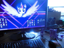 Size: 4608x3456 | Tagged: safe, twilight sparkle, alicorn, equestria girls, 4chan, bjd, desktop, hujoo, merchandise, pc, purple, sableeye, toy, waifu wall, wallpaper