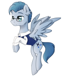 Size: 1800x2100 | Tagged: safe, artist:lambydwight, oc, oc only, pegasus, ear fluff, simple background, solo, transparent background