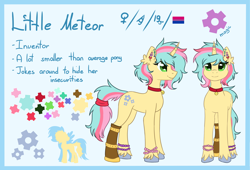 Size: 2160x1473 | Tagged: safe, artist:lambydwight, oc, oc only, earth pony, pony, bell, bell collar, collar, ear fluff, ear piercing, piercing, reference sheet, solo, unshorn fetlocks