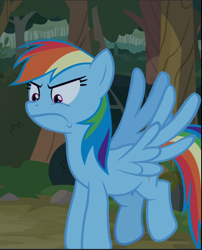 Size: 761x943 | Tagged: safe, screencap, rainbow dash, between dark and dawn, spoiler:s09e13, angry, cropped, flying, solo, spread wings, wings