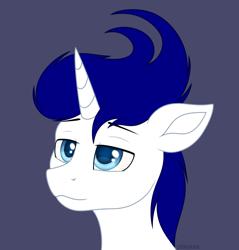 Size: 2101x2198   Tagged: safe, artist:starshade, oc, oc only, pony, unicorn, male, simple background, solo, stallion, white background