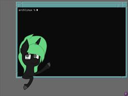 Size: 4096x3072   Tagged: safe, artist:terminalhash, oc, oc:terminalhash, pony, unicorn, linux, terminal, vector