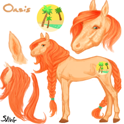 Size: 600x600 | Tagged: safe, artist:sdlhf, oc, oc only, oc:oasis, earth pony, pony, braid, braided tail, female, freckles, hoers, mare, offspring, parent:big macintosh, parent:fluttershy, parents:fluttermac, realistic, reference sheet, simple background, solo, white background