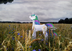 Size: 1920x1374 | Tagged: safe, alternate version, artist:the-brightest-sunny-days, princess celestia, pony, cloud, cloudy sky, field, irl, photo, ponies in real life, sad, solo, standing, wheat