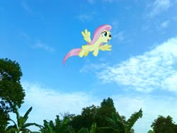 Size: 2576x1932 | Tagged: safe, edit, editor:fathzoli, fluttershy, pony, cloud, irl, photo, photo edit, photoshop, ponies in real life, sky, solo, tree