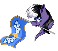 Size: 539x467 | Tagged: safe, artist:chazmazda, oc, oc only, pony, commission, commissions open, digital art, flag, shade, simple background, solo, transparent background