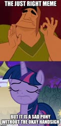 Size: 500x1030 | Tagged: safe, edit, edited screencap, screencap, twilight sparkle, alicorn, human, pony, the summer sun setback, spoiler:s09e17, caption, image macro, meme, pacha, text, the emperor's new groove, twilight sparkle (alicorn)