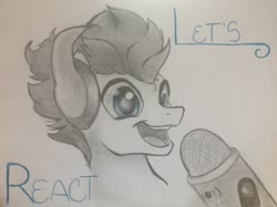 Size: 1280x958   Tagged: safe, artist:an-alpaca-named-bucket, oc, oc only, pony, microphone, smiling, solo, traditional art