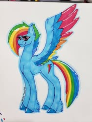 Size: 768x1024 | Tagged: safe, artist:majeste749, rainbow dash, pegasus, pony, leak, spoiler:g5, colored wings, female, g5, mare, multicolored wings, rainbow dash (g5), rainbow wings, redesign, simple background, smiling, solo, spread wings, traditional art, wings