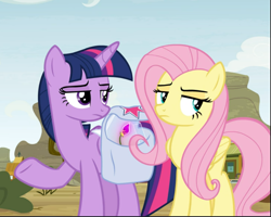 Size: 951x761 | Tagged: safe, screencap, fluttershy, twilight sparkle, alicorn, growing up is hard to do, spoiler:s09e22, bag, cropped, duo, flower, fluttershy is not amused, saddle bag, shrug, twilight is not amused, twilight sparkle (alicorn), unamused, wishing flower