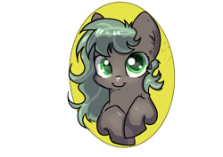 Size: 1748x1240   Tagged: safe, artist:dumbwoofer, oc, oc:forest air, pegasus, pony, big eyes, female, filly, solo
