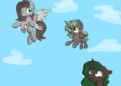 Size: 2275x1614 | Tagged: safe, artist:dumbwoofer, oc, oc:cloud cover, oc:forest air, oc:pine hearts, fly, insect, pegasus, pony, unicorn, family, female, filly, learning, moms, sky, worried