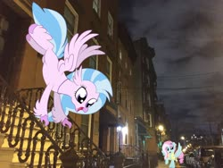 Size: 3264x2448 | Tagged: safe, artist:cheezedoodle96, artist:jhayarr23, edit, editor:topsangtheman, vector edit, kerfuffle, silverstream, hippogriff, pegasus, pony, apartment, irl, new jersey, night, photo, ponies in real life, stairs, that hippogriff sure does love stairs, vector
