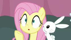 Size: 1920x1080 | Tagged: safe, screencap, angel bunny, fluttershy, pegasus, pony, rabbit, a trivial pursuit, spoiler:s09e16, animal, reaction image