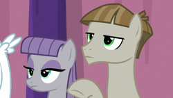 Size: 1920x1080 | Tagged: safe, screencap, bulk biceps, maud pie, mudbriar, earth pony, pegasus, pony, a trivial pursuit, spoiler:s09e16, duo, female, male, mare, maudbriar, shipping, small wings, stallion, straight, wings