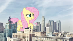 Size: 2643x1500 | Tagged: safe, artist:andoanimalia, artist:theotterpony, fluttershy, pegasus, pony, building, city, collage, female, giant pony, giantess, highrise ponies, irl, los angeles, macro, mare, mega fluttershy, mega giant, photo, photoshop, ponies in real life, story included