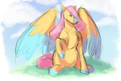 Size: 2836x1908 | Tagged: safe, artist:geisharozu, fluttershy, butterfly, pony, sketch, solo