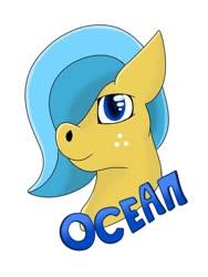 Size: 510x680   Tagged: safe, artist:valyriaart, oc, oc only, oc:ocean shore, badge