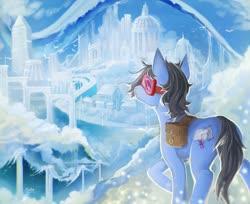 Size: 1920x1566 | Tagged: safe, artist:elzafox, oc, oc only, oc:sight seer, bird, earth pony, pony, bag, cloud, cloudsdale, goggles, male, saddle bag, scenery, signature, sky, solo, stallion