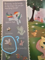 Size: 960x1280 | Tagged: safe, fluttershy, rainbow dash, bird, bluebird, butterfly, dragonfly, duck, hummingbird, insect, parasprite, pegasus, pony, book, bumblebee, flutterfly, look and find, my little pony look and find, page, you had one job