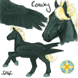 Size: 600x600 | Tagged: safe, artist:sdlhf, oc, oc:conway, pegasus, pony, bio in description, hoers, male, offspring, parent:dumbbell, parent:lightning dust, parents:lightningbell, realistic, reference sheet, simple background, solo, stallion, white background