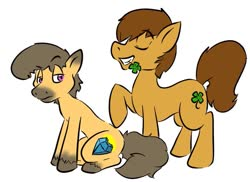 Size: 799x582 | Tagged: artist needed, source needed, safe, oc, oc only, oc:charmed clover, earth pony, pony, clover, duo, eyes closed, flower, flower in mouth, four leaf clover, grin, male, mouth hold, raised hoof, simple background, sitting, smiling, stallion, unshorn fetlocks, white background