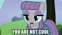 Size: 1280x720 | Tagged: safe, artist:jaredking203, edit, edited screencap, screencap, maud pie, earth pony, pony, the maud couple, caption, female, image macro, meme, open mouth, text