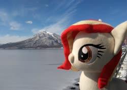 Size: 2048x1453 | Tagged: safe, artist:hihin1993, oc, oc only, oc:poniko, japan, lake, mountain, plushie, solo